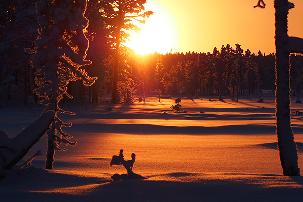 hunting in the sunset january Nordguide