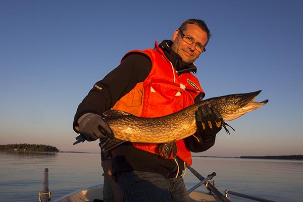 Pike fishing in Swedish Lapland