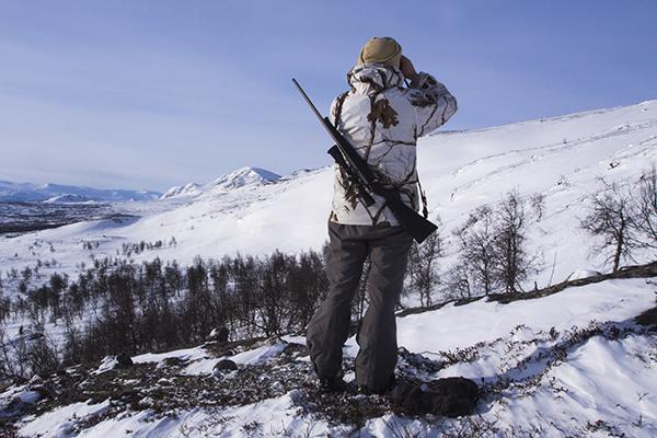 scoping for ptarmigans,nordguide